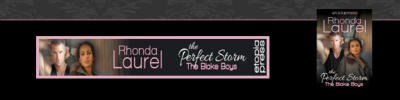 BC Banner The Perfect Storm