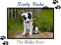 Rowdy Blake Banner