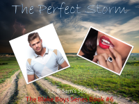 The Perfect Storm Excerpt Banner 2